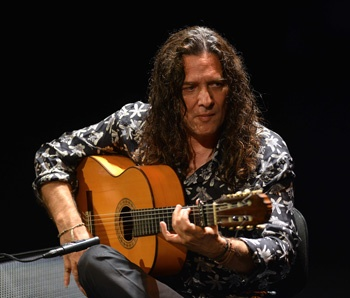 Flamenco guitar styles and diversity